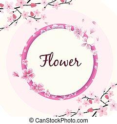 flor, círculo, marco, sakura, fondo rosa, vector, imagen
