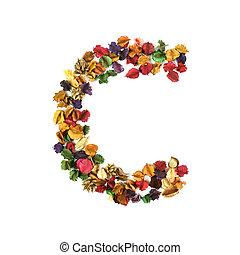 flor, c, alfabeto, isolado, secado, fundo, branca