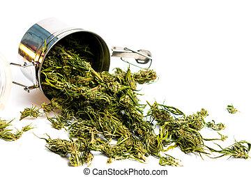 flor, cannabis, cânhamo, marijuana, lata