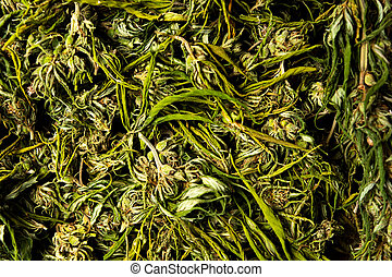 flor, cannabis, cânhamo, pilha, marijuana