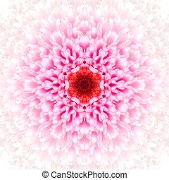 flor, centro, blanco, mandala, concéntrico, calidoscopio