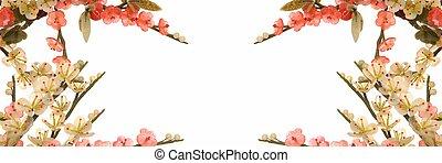 flor, cereza, jade, 1