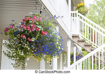 flor cesta, penduradas