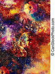 flor, collage, resumen, dinámico, efecto, space., motivo, fuego, multicolor
