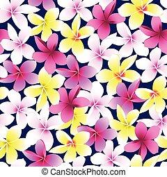 flor, colorido, frangipani, seamless, tropical, plumeria, patrón