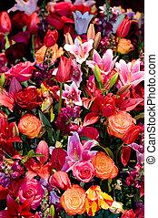 flor, composição
