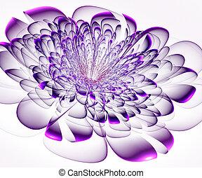 flor, computador gerou, experiência., roxo, bonito, branca