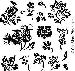 flor, conjunto, ilustración
