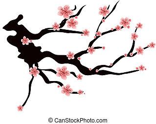 flor, cor-de-rosa, ameixas