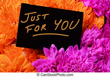 flor cor-de-rosa, aster, pretas, laranja, cartão