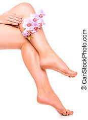 flor cor-de-rosa, relaxante, pedicure, manicure, orquídea