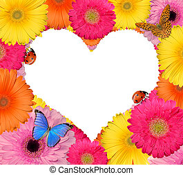 flor, coração, isolado