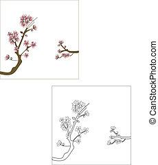 Flor de cerejeira (sakura), 2 vers?es, colorida e apenas os tra?os.