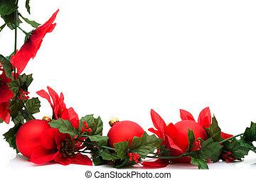 flor de nochebuena, frontera