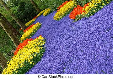 flor de primavera, cama