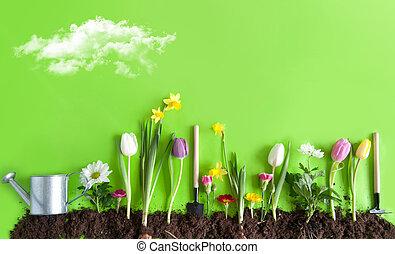 flor de primavera, cama, plano de fondo