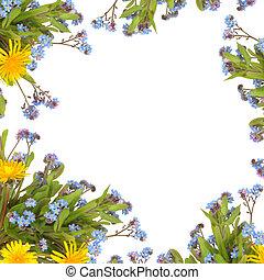 flor de primavera, frontera