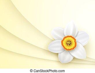 flor de primavera, plano de fondo