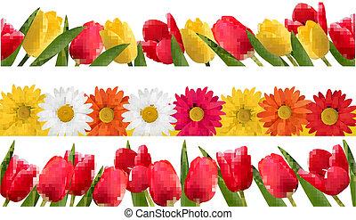 flor de primavera, vector., borders.