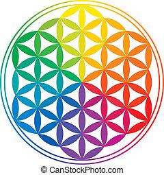 flor, de, vida, colores del arco iris