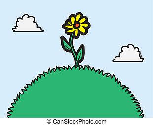 flor, en, un, colina