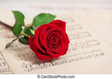 flor, folha, rosa, notas, música, vermelho