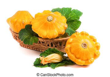 flor, folha, vime,  squash, amarela, isolado, fundo,  pattypan, cesta, branca