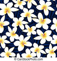 flor, frangipani, seamless, tropical, plumeria, patrón, blanco