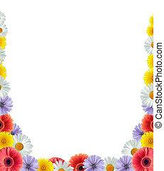 flor, frontera