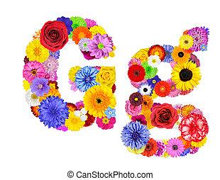 flor, g, alfabeto, -, isolado, letra, branca