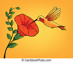 flor, hummingbird