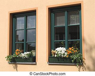 flor, janelas