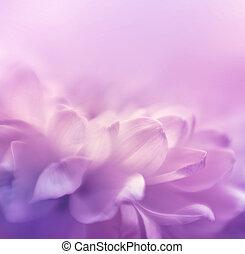 flor, lensbaby, macrolens., foco, space., hecho, plano de ...