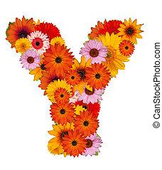 flor, letra