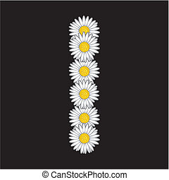flor, letra, margarida