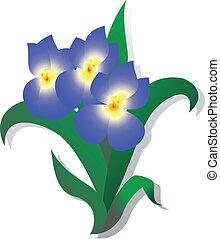 flor, ligado, um, fundo branco