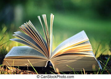flor, livro aberto, capim