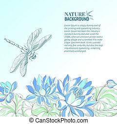 flor lotus, dragonfly.