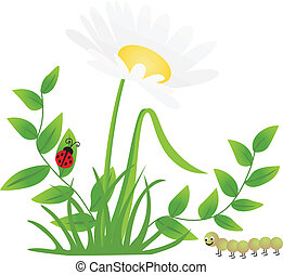 flor, mariquita, ciempiés