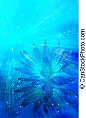 flor, meditación, resumen