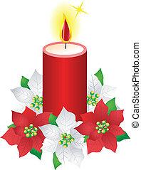 flor, natal, poinsettia, vela