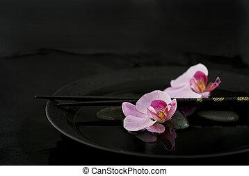 flor, orquídea