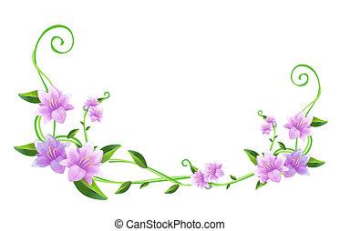flor púrpura, verde, vides
