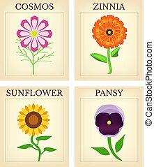 flor, paquetes, semilla