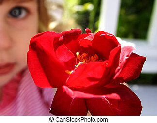 flor, para usted