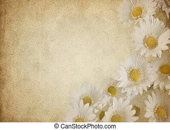flor, pergaminho