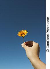 flor, por si