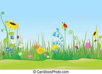 flor, pradera, con, mariquitas