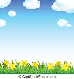 flor, pradera, con, pasto o césped, y, nube