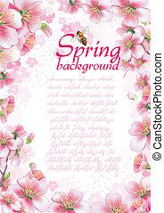 flor, primavera, plano de fondo, cereza